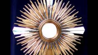 getlinkyoutube.com-Oracion de Sanacion atravez del Rosario con el Padre Dario Bencosme (Completa)