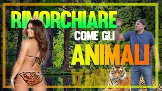 getlinkyoutube.com-RIMORCHIARE COME GLI ANIMALI
