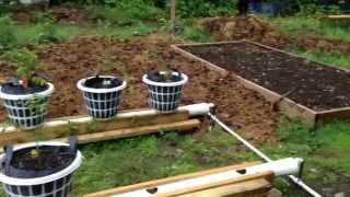 getlinkyoutube.com-My modified rain gutter grow system.