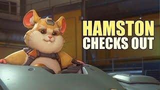 Hamston Checks Out width=