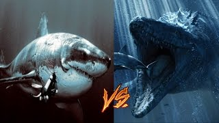 getlinkyoutube.com-Megalodon vs Mosasaur-My Thoughts