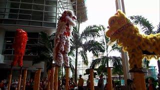 getlinkyoutube.com-Acrobatic Lion Dance by Selayang Hong Teck 士拉央弘德體育會 @Paradigm Mall (CNY 2015)