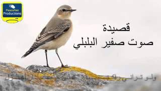 قصيدة الأصمعي صوت صفير البلبلي