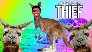 getlinkyoutube.com-HOW TO ROB A KANGAROO