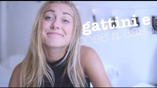 getlinkyoutube.com-gattini e cose a caso