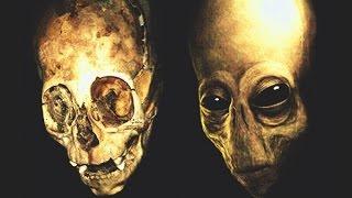 getlinkyoutube.com-10 gigantes encontrados que no encajan con la teoría de la evolución