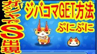 getlinkyoutube.com-ぷにぷにでジバコマGET&ガシャでSランク!!!妖怪ウォッチぷにぷに つちのこ実況
