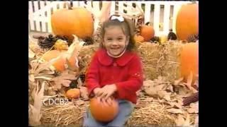 getlinkyoutube.com-Playhouse Disney Movie Time Monday Commercials (11/14/2005)