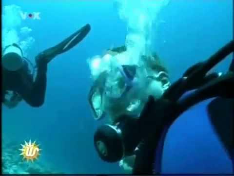 Scuba Diving - Woman Dive In Maldives