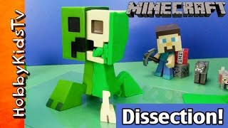 getlinkyoutube.com-Play Doh Dissection Minecraft Creeper Anatomy Deluxe Vinyl Figure TNT Steve by HobbyKidsTV