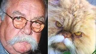 getlinkyoutube.com-Animais parecidos com pessoas