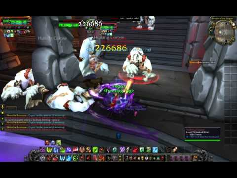 Heroes WoW 255 Funserver - Getting started with instances - Drak'Tharon Keep