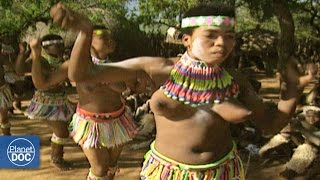 getlinkyoutube.com-Special dances in Sudafrica