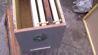 getlinkyoutube.com-ловля пчелиных роев чясть 1 сбор и установка роевни