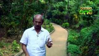 getlinkyoutube.com-Makkani - Actor Mamukkoya explores the food and tastes of Malabar (Episode 22)