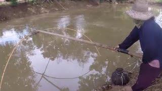 getlinkyoutube.com-ยกสะดุ้ง ท้ายฝายน้ำล้น โดยยายแหล้ Fishing by fish trap