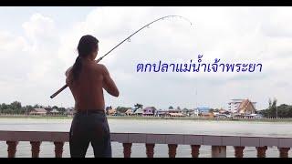 getlinkyoutube.com-ตกปลาแม่น้ำเจ้าพระยา