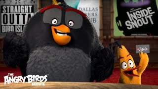 The Angry Birds Movie   The Flock Visits AMC Theaters
