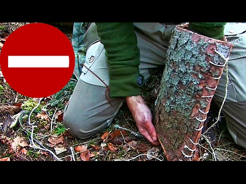 Bushcraft Skills: How to make a shoulder bag out of bark. First steps! To learn from mistakes.