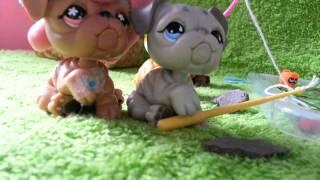 "getlinkyoutube.com-LPS: ""Zakreceni"" #28 Littlest Pet Shop !"