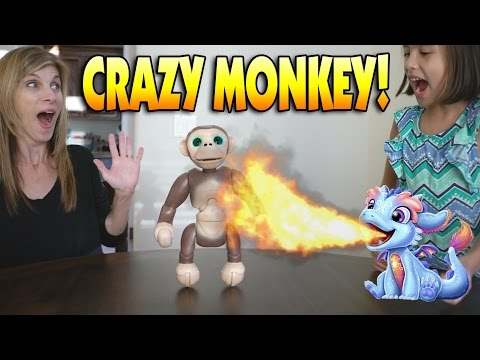 CRAZY MONKEY!!! Fun with Zoomer Chimp, Torch My Blazin' Dragon & Barbie Hello Dream House!