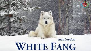 White Fang - Audiobook by Jack London width=
