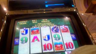 getlinkyoutube.com-HANDPAY JACKPOT Whales of Cash Slot machine Huge Win  Handpay Max bet