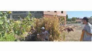 Pre Fab Farm - Wastewater Garden