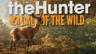 getlinkyoutube.com-The Hunter Call of the Wild Beta Gameplay - Hunting is Hard! - theHunter Call of the Wild