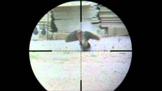 getlinkyoutube.com-Fx Royal 400  5,5 Hunt by Haitham Kuwait