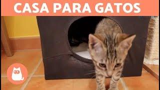getlinkyoutube.com-Casa para gatos casera con una camiseta - DIY