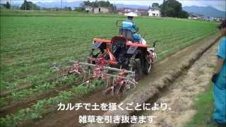 getlinkyoutube.com-大豆・麦・そば安全・安心生産対策セミナー2 ~カルチ除草機による雑草防除~