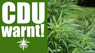 getlinkyoutube.com-CDU warnt: Cannabislegalisierung droht! | DHV News #92
