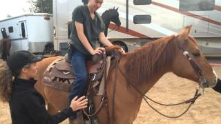 getlinkyoutube.com-Mount horse without girth for educational purposes; proper mounting technique