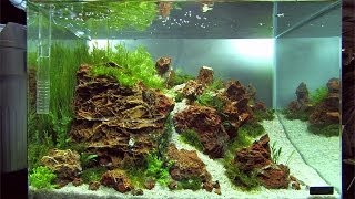 "getlinkyoutube.com-Nano Tanks of the Aquascaping Contest ""The Art of the Planted Aquarium"" 2014 (pt. 3 of 3)"