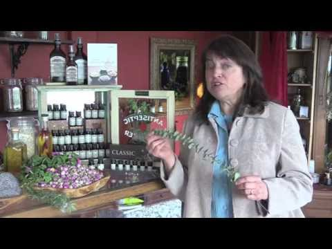 Essential Oils for Beginners with Kathi Keville - PART 2
