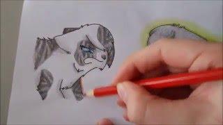 Speed-draw Ivypool vs. Dovewing/ Efeusee vs. Taubenflug ~Break free
