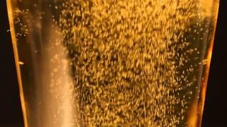 getlinkyoutube.com-bubbles in beer