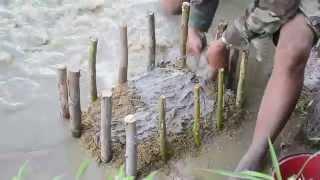 getlinkyoutube.com-เกษตรทฤษฎีใหม่ ทำนา1ไร่ได้เงิน1แสน (ตอนที่ 3) โดย สังข์ ละหานทราย
