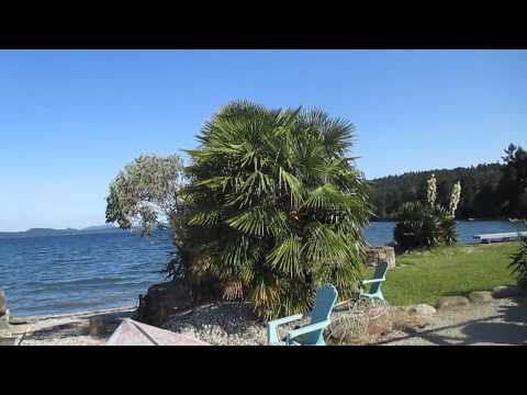Yuccas & Exotic Garden on Salt Spring Island