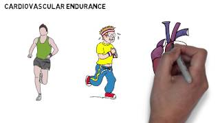 Endurance and Stamina - GCSE Physical Education (PE) Revision