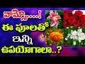 Vanitha News