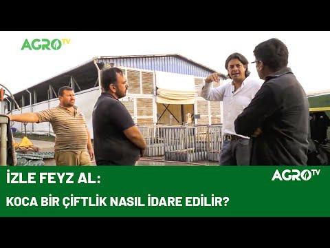Hayvan Refahı İçin Fanların Önemi / AGRO TV