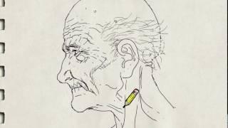 getlinkyoutube.com-Dibujo del rostro del anciano de perfil