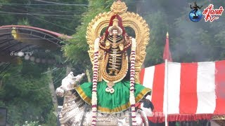 நல்லூர் கந்தசுவாமி கோவில் கஜவல்லி மஹாவல்லி உற்சவம் 16.08.2017