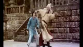 getlinkyoutube.com-Top 10 Kung Fu Stars- Music Vid-