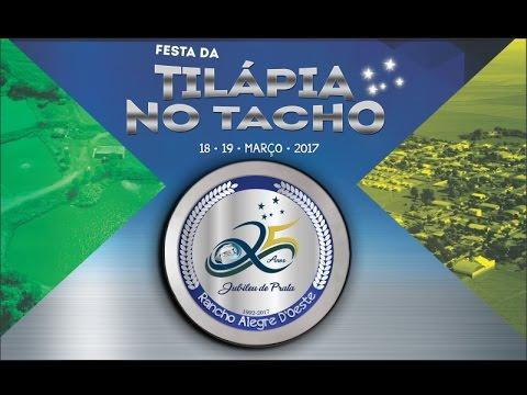 Veja as atrações da Festa da Tilápia no Tacho Rancho Alegre D`Oeste - 2017