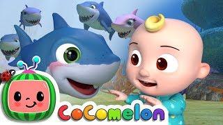 Baby Shark | ABCkidTV Nursery Rhymes & Kids Songs width=