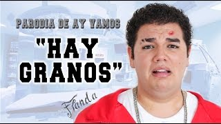 "getlinkyoutube.com-""Hay Granos"" - PARODIA - AY VAMOS - Franda - pancholanda - 2015"