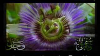 getlinkyoutube.com-ياسر الدوسري يجتاز الآفاق بإبداع عجيب دعاء الختمة